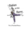 Babies at the Barre Coupon & Promo Codes
